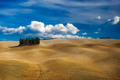 Vacation Farmhouses and Villas in Tuscany for rent